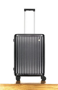 Travel Point 60 Cm Sert Valiz PC114-S-24
