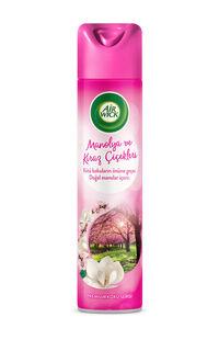 Air Wick Aerosol Manolya ve Kiraz 300 Ml