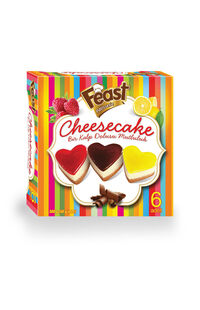 Feast Kalpli Cheesecake 480 Gr