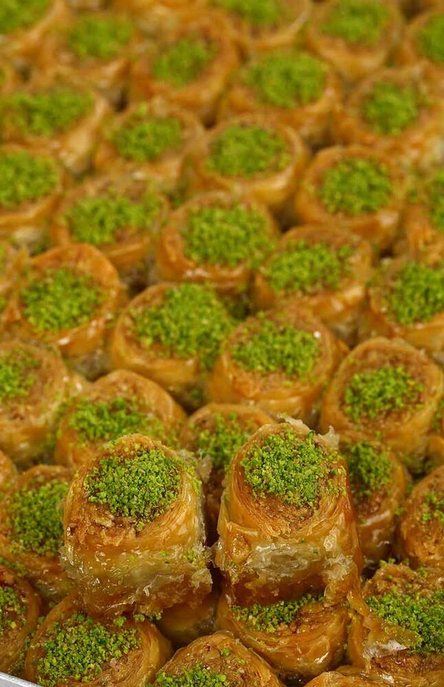 Image for Saray Sarma Kg from Eskişehir